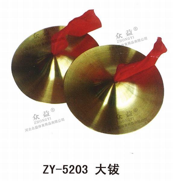 ZY-5203大䥽