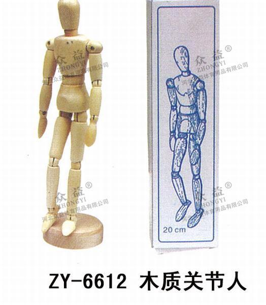 ZY-6612 木质关节人